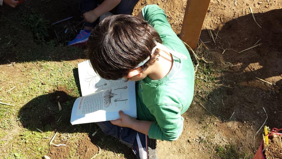 bambino con libro nella fattoria zooantropologica