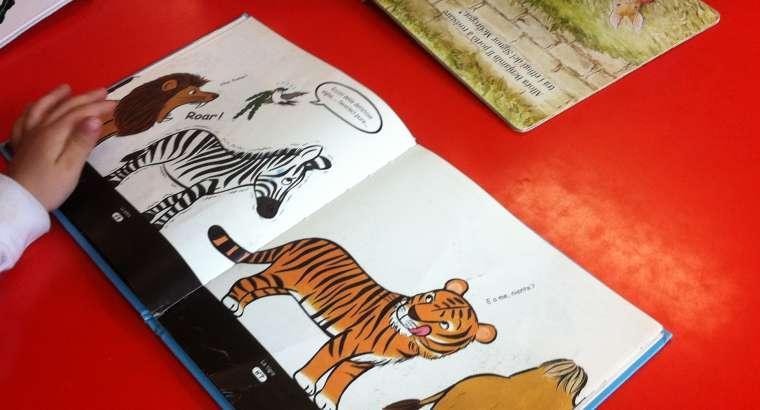 Zooantropologia didattica